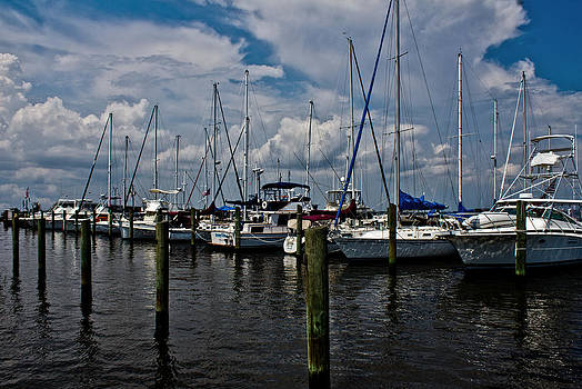 Biloxi Marina by Mamie Thornbrue