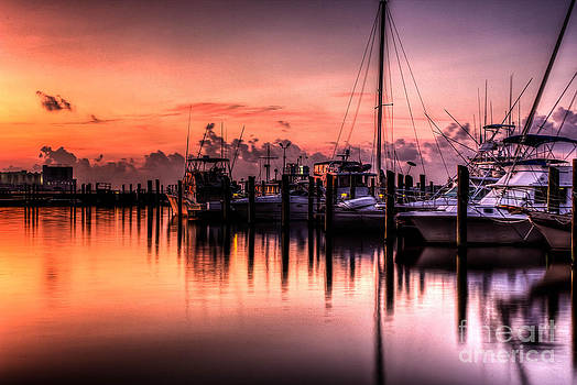 Biloxi Mississippi Harbor by Maddalena McDonald