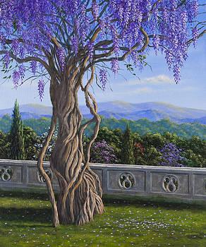 Biltmore Wysteria by Joe Mckinney