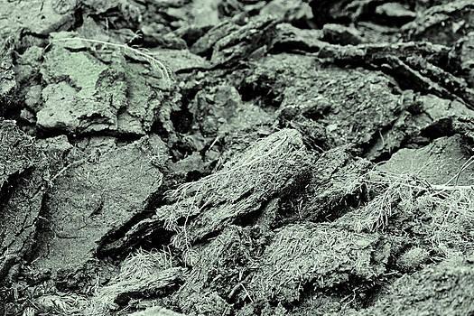 Kantilal Patel - Bio fuel cattle manure pie Texture