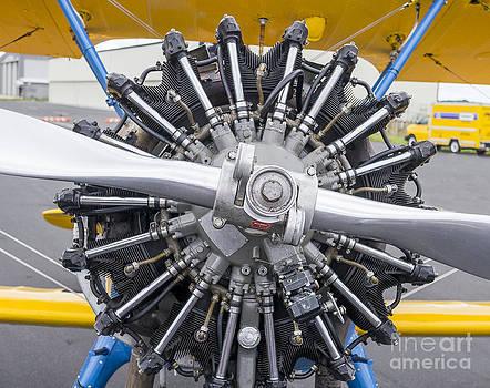 Steven Ralser - Biplane Engine