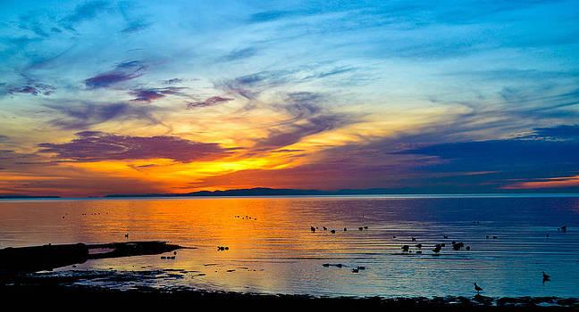Birch Bay Sunset 2 by Blanca Braun