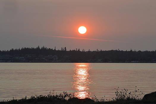 Nicki Bennett - Birch Bay Sunset