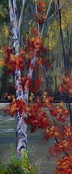 Birch Beauty by Shirley Watts