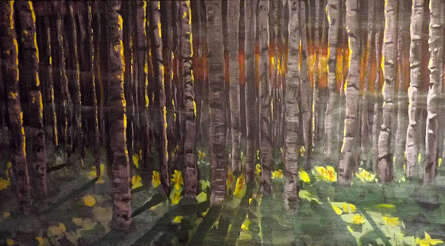 Birch forest at sunset by Andrea Kucza