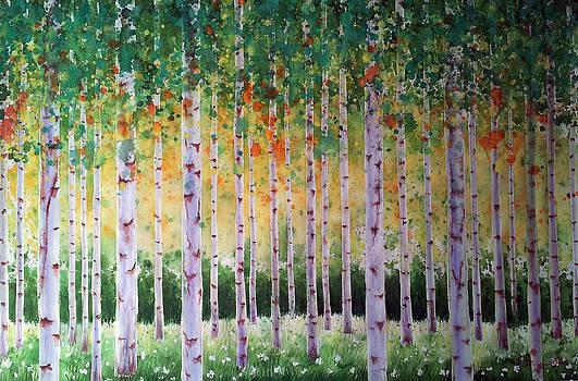 Birch Forest by Bryan Ahn