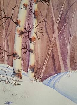 Birch Forest by Lynette Clayton