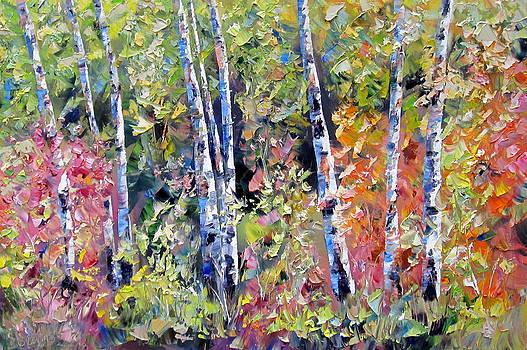 Birch Forest by Stephen Davis
