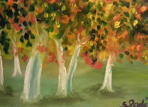 Birch Grove in Autumn by Steve Jorde