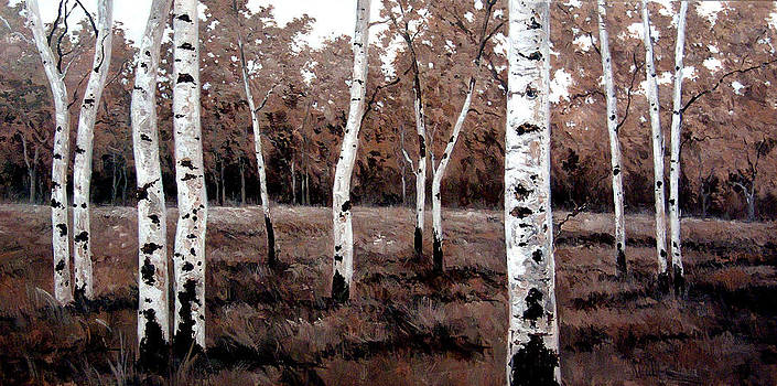Kanayo Ede - Birch Grove