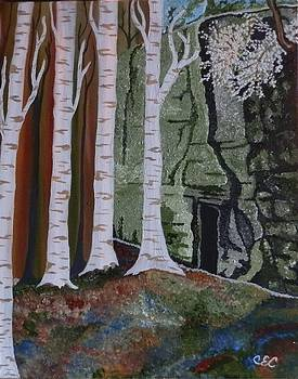 Birch Hollow by Carolyn Cable