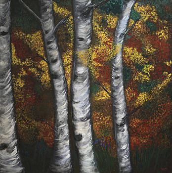 Birch In Autumn by Megan Morris Collection