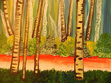 Birch Path by Suzanne Buckland
