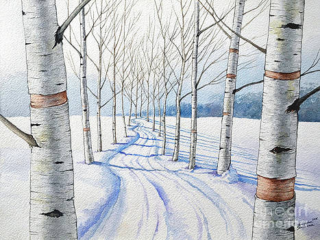Christopher Shellhammer - Birch Trees Along the Curvy Road