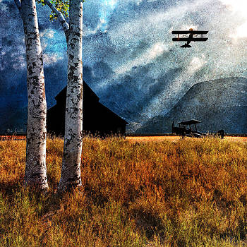 Birch Trees and Biplanes  by Bob Orsillo