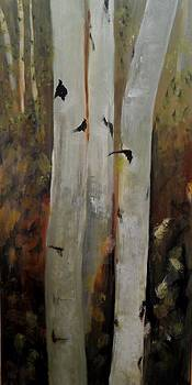 Birch Trees by Marcia Crispino