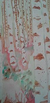 Birch Trees by Rachel Tilseth