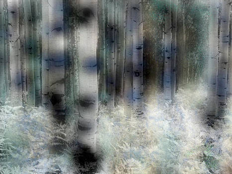 Birches by Ilias Athanasopoulos