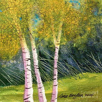 Birches on the Green by Tina Siart Boylan