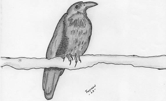Bird 2 by Dan Twyman