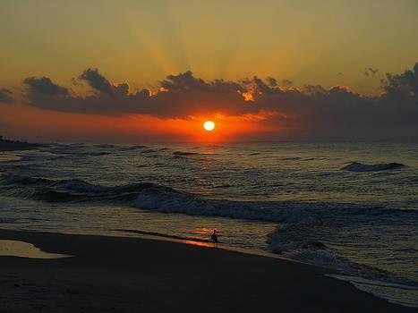 Early Bird on the Beach by Denny Ragan