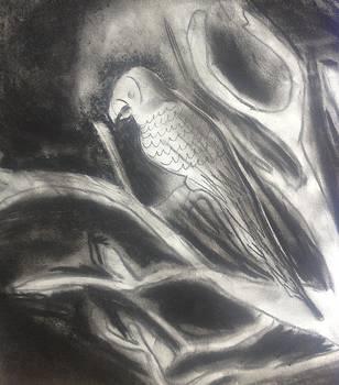 Artists With Autism Inc - Bird at Dark Night