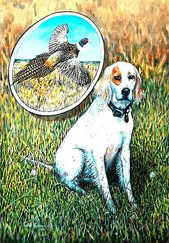 Bird Dog by Todd Spaur
