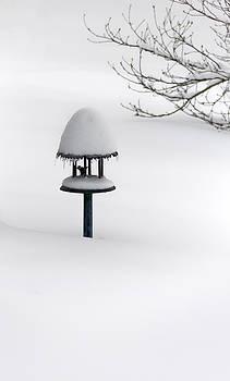 Bird Feeder in Snow by Greg Reed