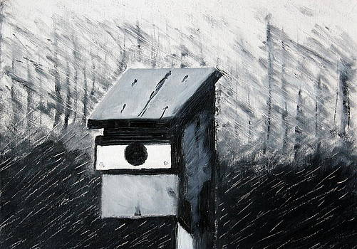 Bird House by Joe Sirianni