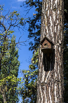 Bird house. by Slavica Koceva