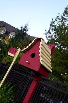 Bird House by Ted Mahy