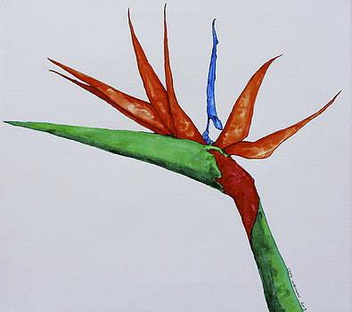 Bird of Paradise by Chad Wortman