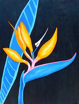 Bird of Paradise by Faye Silliman