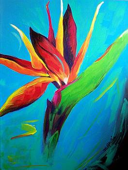 Bird of Paradise on Fire by Maureen Ghetia