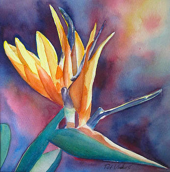 Bird of Paradise by Pat Vickers