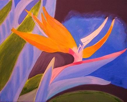 Bird of paradise by Soheila Madani