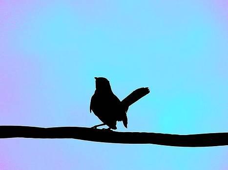 Bird On A Wire by Jessica Stiles
