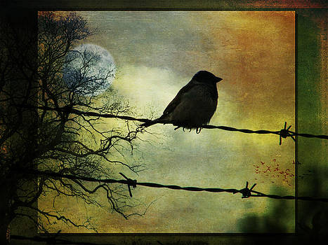 Bird on a Wire by Marie  Gale