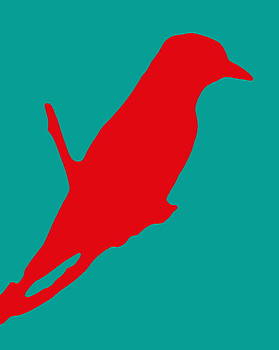 Ramona Johnston - Bird Silhouette Red Teal