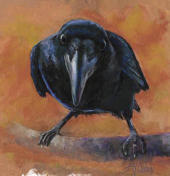 Bird Watching by Billie J Colson