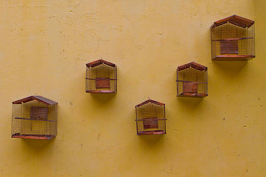 Birdcages by Joep K