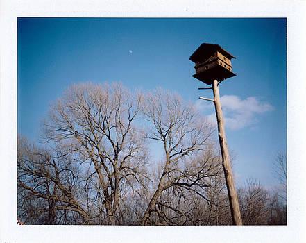 Birdhouse by Brady D Hebert