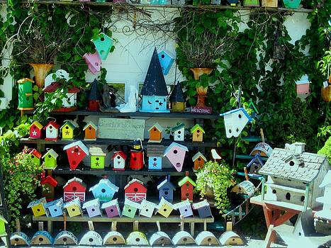 Birdhouses 1 by Will Boutin Photos