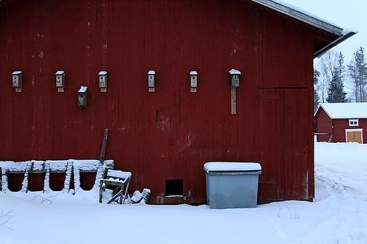 Birdhouses by Jaakko Saari