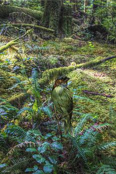 Birdie by Bill Oliver