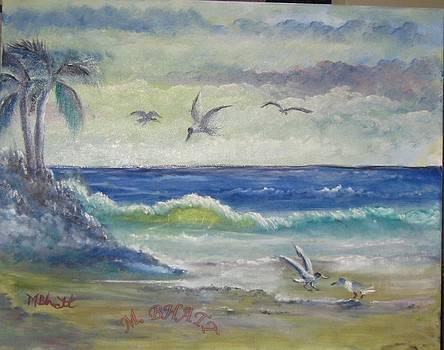 Birds Beach and Beauty by M Bhatt