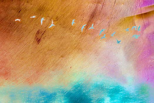 Priya Ghose - Birds In Flight Over Water Art