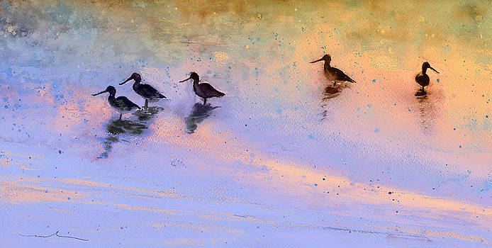 Miki De Goodaboom - Birds in The Camargue