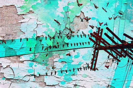 Birds Melody by Irena Orlov