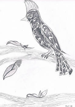Birds of Mexico  by Kali Kardsbykali